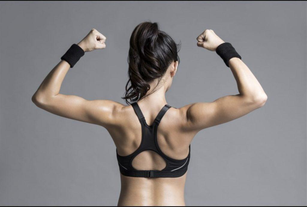 Upper Body (posterior) Exercises
